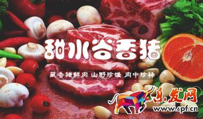 禧德农业甜水河谷藏香猪